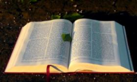 9 Spiritual Books to Read
